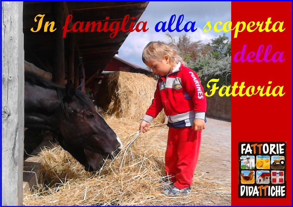famiglie-alla-scoperta-della-fattoria