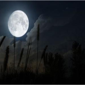 Escursione con la Luna Piena