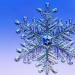 le-meraviglie-dei-cristalli-di-ghiaccio-L-wP5FNr