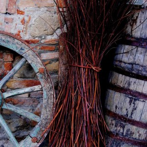 23 Marzo Degustazione di Vini Naturali dei Colli Tortonesi