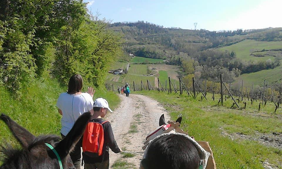 1 Maggio Trekking someggiato con gli asinelli, per famiglie!