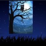 immagine gufo notte