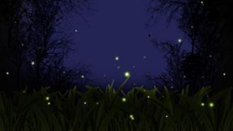 21 Giugno, La Notte delle Lanterne
