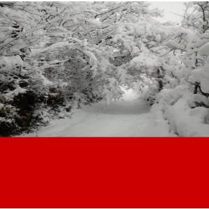 Pausa invernale – Ristorante e Spaccio chiusi